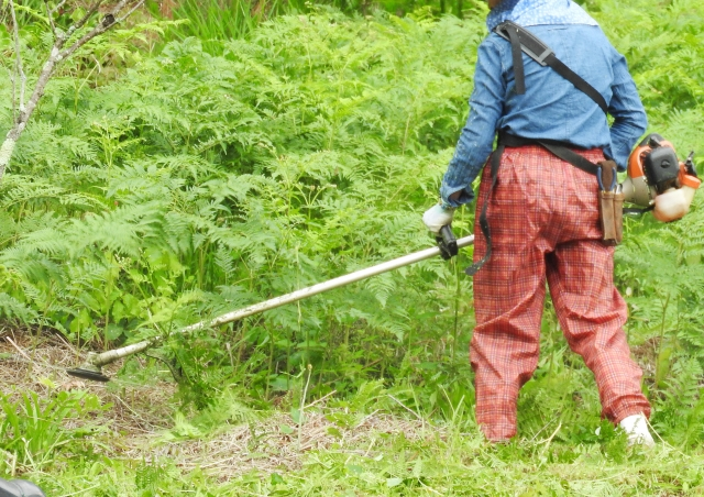仙台市で草刈りにかかる料金相場は?追加料金や業者選びのコツまで解説